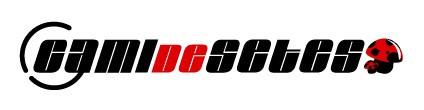 Logo Camidesetes